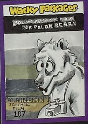 POLAR BEAR FILM